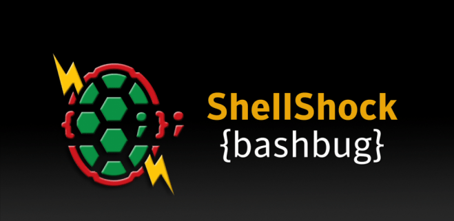 Bash Bug / Shellshock Bug
